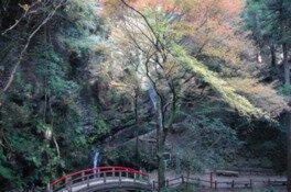黒山三滝の紅葉