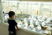 【一部休止】桔梗信玄餅工場テーマパーク