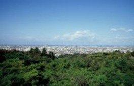 弥彦山 山頂公園