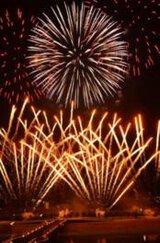 刈谷わんさか祭り2017花火大会