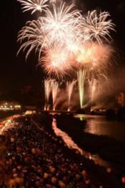 【2020年中止】津山納涼ごんごまつり IN 吉井川