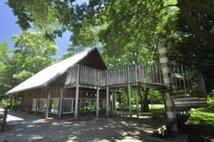 国営昭和記念公園 こどもの森クラフト教室「小枝で生きものづくり」