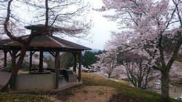 大師山自然公園キャンプ場