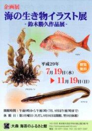 企画展「海の生き物イラスト展 鈴木勝久作品展」