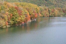 沙流川渓谷の紅葉