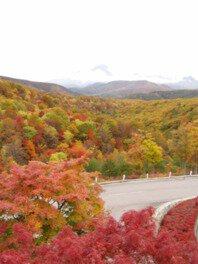 磐梯横向温泉の紅葉