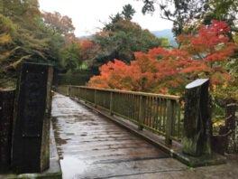 出会い橋の紅葉