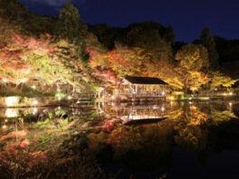 名古屋市東山動植物園の紅葉