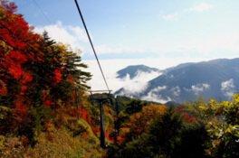 富士見台高原の紅葉