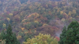 大峰山の紅葉