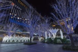 JR博多駅前広場が華やかなイルミネーションで彩られる※画像は過去開催時の様子