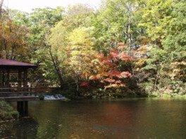 京極町ふきだし公園の紅葉