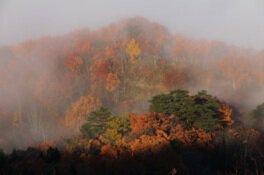 白川湖周辺の紅葉