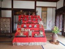 国営昭和記念公園 こもれびの里「ひなまつり」
