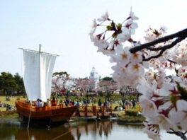 日和山公園の桜(山形県)