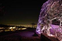 六甲山光のアート「Lightscape in Rokko~Spring Version~」