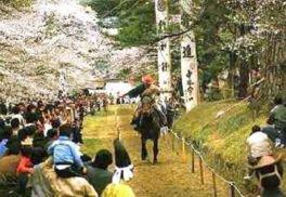 鷲原公園の桜