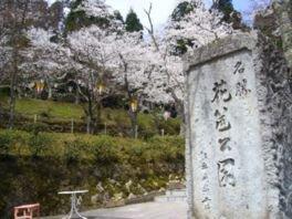 花筐公園の桜