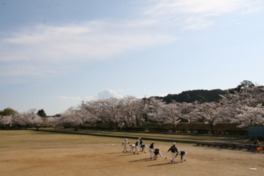 日当山温泉公園