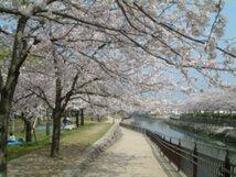 平和市民公園