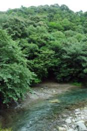 矢谷渓谷キャンプ場