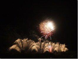 スターマインや尺玉など個性豊かな花火が夜空をダイナミックに彩る