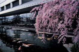 水野美術館