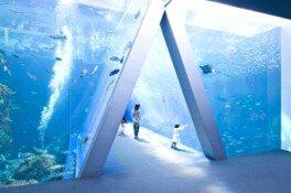 【一部休止】環境水族館アクアマリンふくしま