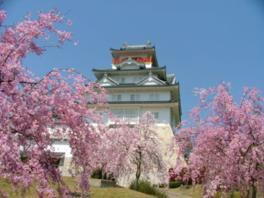 【休館】大阪青山歴史文学博物館