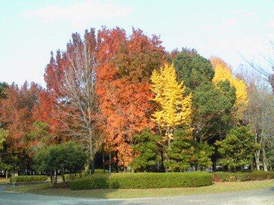 福岡県営春日公園