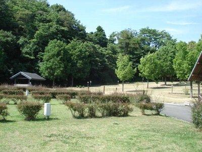 【一時休止中】松山市野外活動センター(オートキャンプ場)
