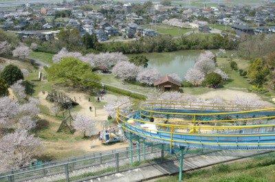 岡岳公園の桜