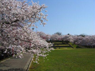 天童公園(舞鶴山)