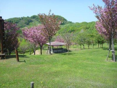 神居岩公園グリーンスポーツキャンプ場