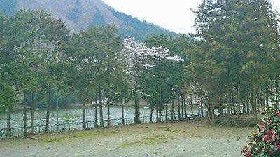 秋山川キャンプ場
