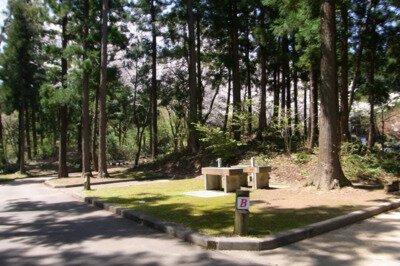 長岡市うまみち森林公園