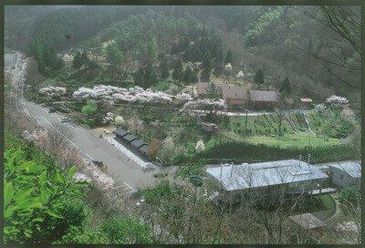 【使用中止】太郎川公園キャンプ場