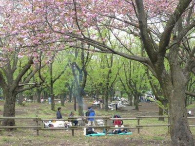 こども自然公園バーベキュー広場