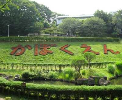 青梅市花木園