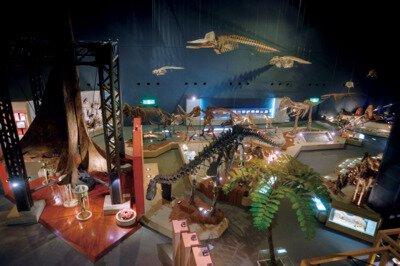 神奈川県立生命の星・地球博物館【臨時休館】