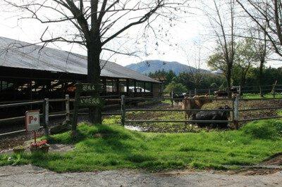 池田牧場 遊牧民