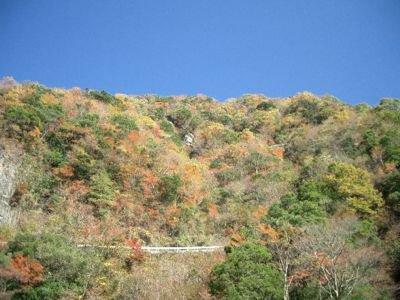 石鎚山(石鎚スカイライン)の紅葉