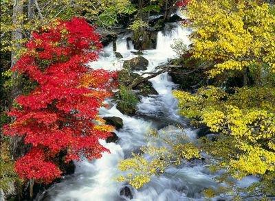 阿寒湖畔の紅葉