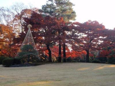 殿ヶ谷戸庭園の紅葉