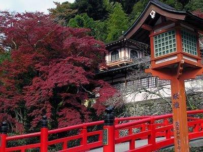 箕面公園(瀧安寺・修業の古場)の紅葉