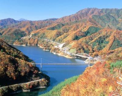 九頭竜湖の紅葉