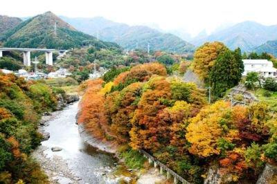 諏訪峡の紅葉