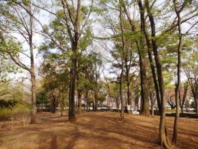 都立府中の森公園