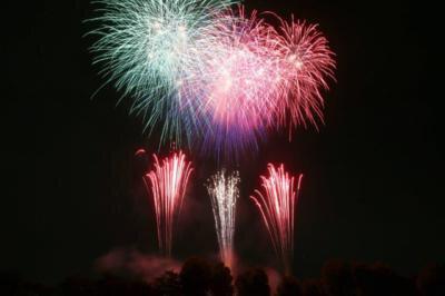 平成29年度 さいたま市花火大会 東浦和 大間木公園会場