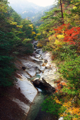 藤河内渓谷の紅葉